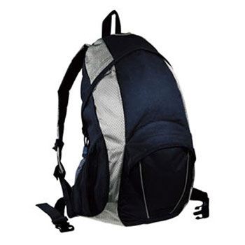 b4798__polaris_backpack_navy_silver.jpg
