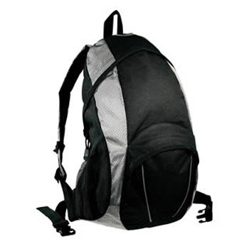 b4798__polaris_backpack_silver.jpg